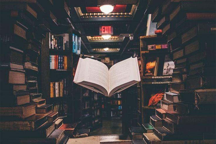 Trouver l'idée de son roman - La Parenthèse Imaginaire en 2020 | Sociologie, Roman, Comment ...