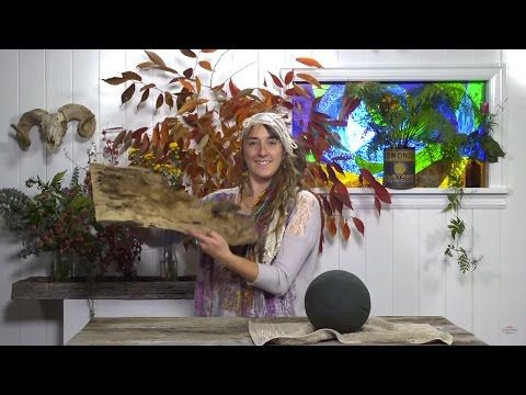 Episode three – Autumn Oasis Arrangement | Everything Flowers