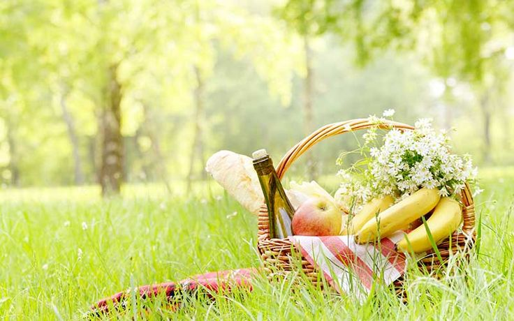 Use this handy checklist to remember what to pack for a picnic in the park. From dinnerware and utensils to recipes and clean up, we've got you covered!