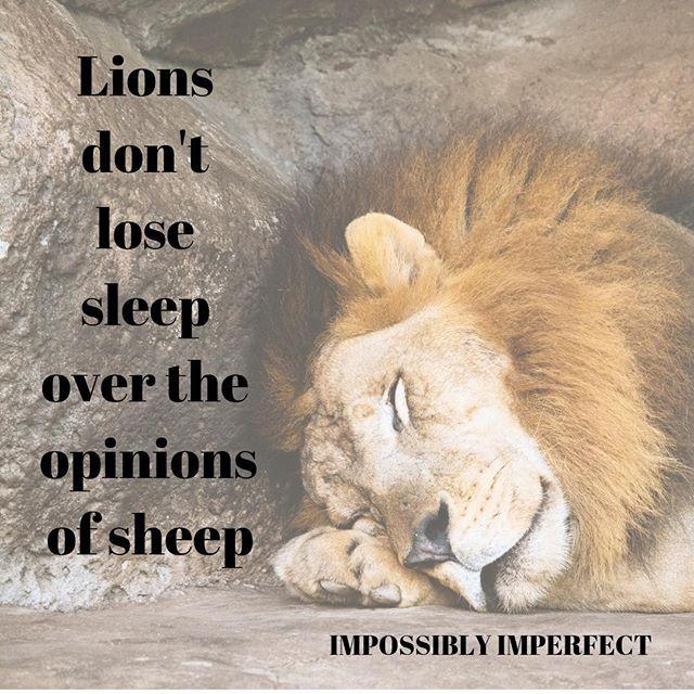 Be As Confident As A Lion Lion Motivational Inspirational