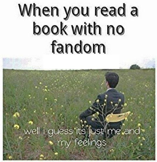 Yeah. The moments when you just think 'Even twilight has a fandom. But nope. None for this spectacular book.'.