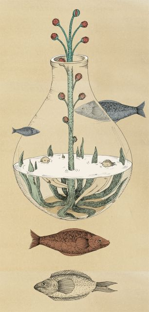 Alicia Baladan -- sorry friends, don't mean to go to hipster funky on yall but i love the concept of this piece... man and woman swimming in the fish bowl and the fish swimming on the outside? cool.