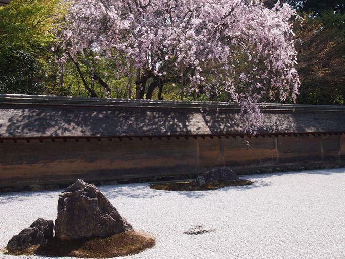 京都の路面電車「嵐電」で巡る!春の花の名所と世界遺産 | 京都府 | [たびねす] by Travel.jp