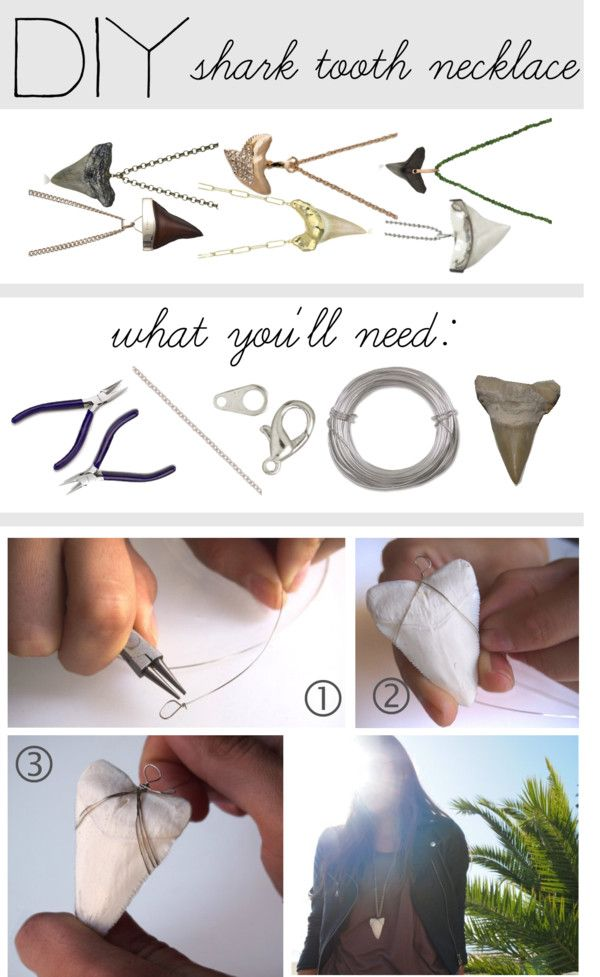 """DIY Shark Tooth Necklace"" by polyvore-editorial ❤ liked on Polyvore"