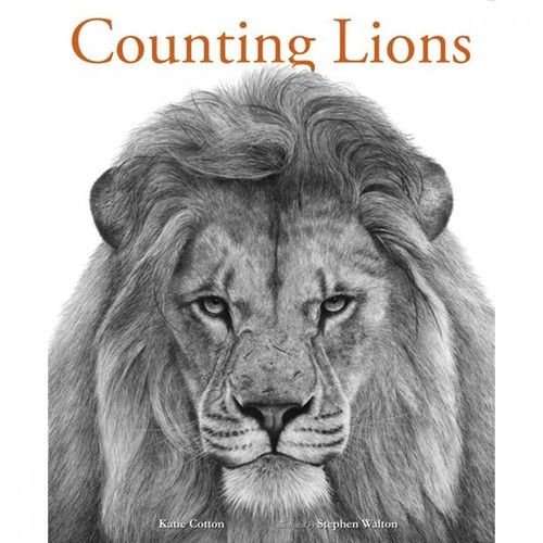 Counting Lions is a work of art