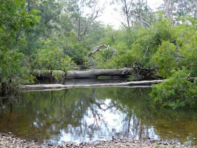 Blunder Creek
