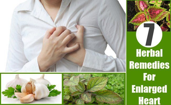 Herbal Remedies For Enlarged Heart