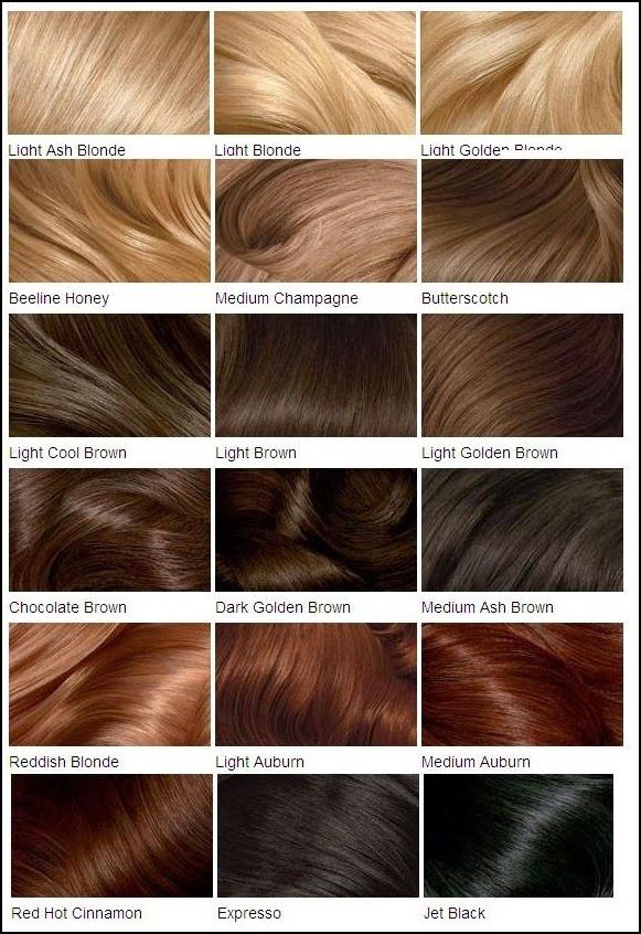 Clairol S Hair Color Chart Colors Brown
