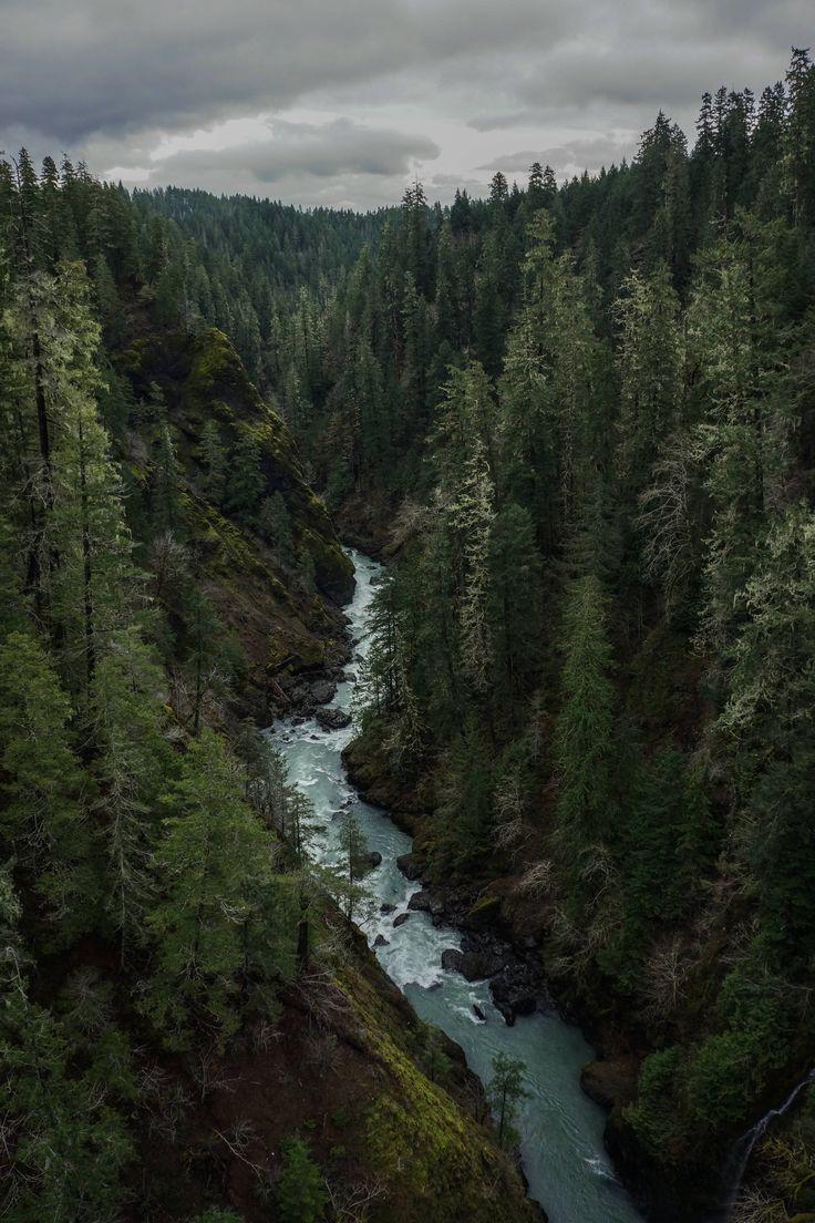 [OC]Olympic National Forest Skokomish River [60004000] #reddit