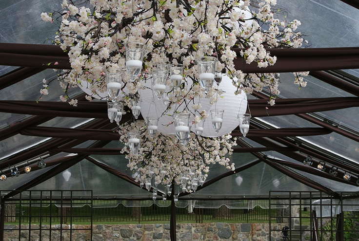 Japanese-themed event, overhead feature with cherry blossoms, white lanterns, and hanging candle vases
