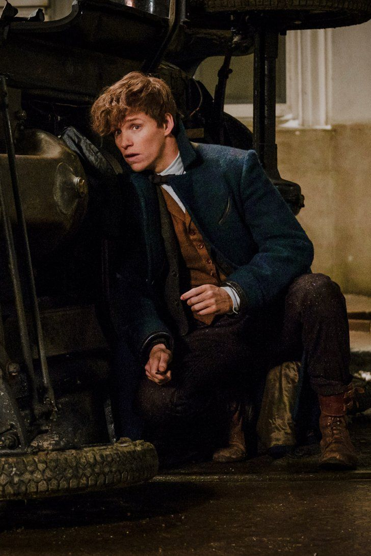 Who Plays Gellert Grindelwald in Fantastic Beasts and Where to Find Them?