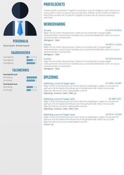 voorbeeld ict cv CV voorbeeld voor de ICT | CV templates per vakgebied downloaden