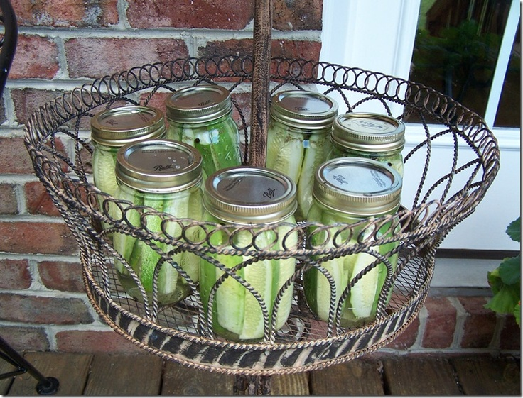Pin by suzanna j on growing stuff indoors and out my