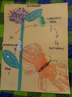 Complete lifecycle of the butterfly using handprints and thumbprints.  For 2 day preschool?  For 1 day mothers day craft.  Can make it easier by printing the stem and leaves, maybe even outlines for where to paint and the words and copying in color.    Halfway Homeschooling: Spring Crafts - Life Cycle of the Monarch Butterfl...