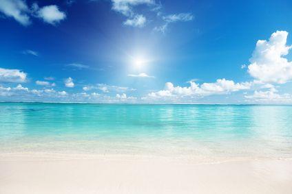 萌えるカリブ海
