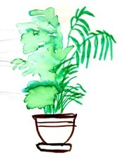 I've wet the plants, drawing part of installation by Rikke Hostrup 2001, Leopoldina Firenze 2001