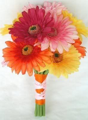 bridesmaids--gerbera daisy