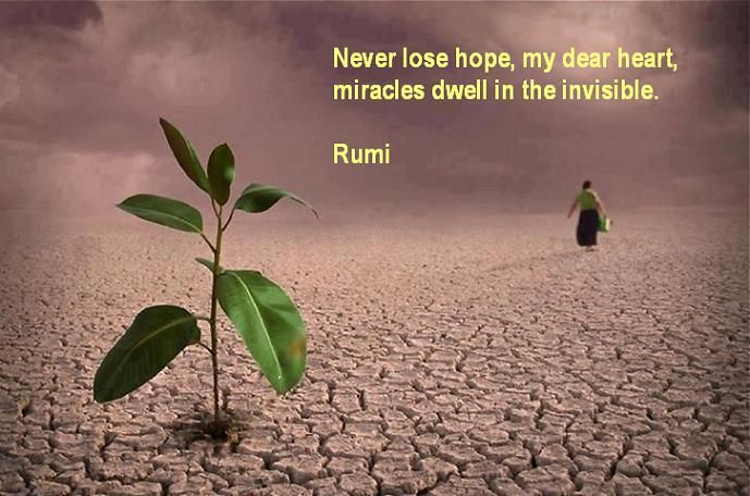 Rumi Quotes On Happiness. QuotesGram