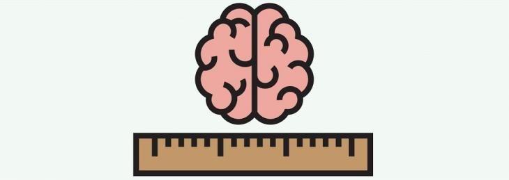 El sistema nervioso en 60 segundos: Principios de localización y lateralización cerebral | Asociación Educar para el Desarrollo Humano