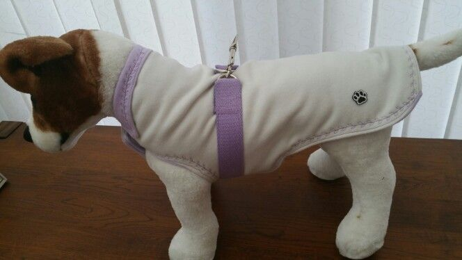 Cream and lilac cashmere dog coat