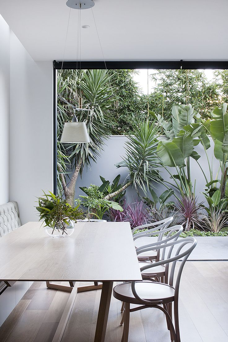 A wall of planting to create a small courtyard. The backyard doesn't have to be big for this to work. Bifold doors to increase sense of space?