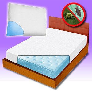 Bed Bug Barrier Mattress Cover Queen
