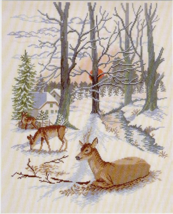 Gallery.ru / Фото #29 - Олени в зимнем лесу - sampo