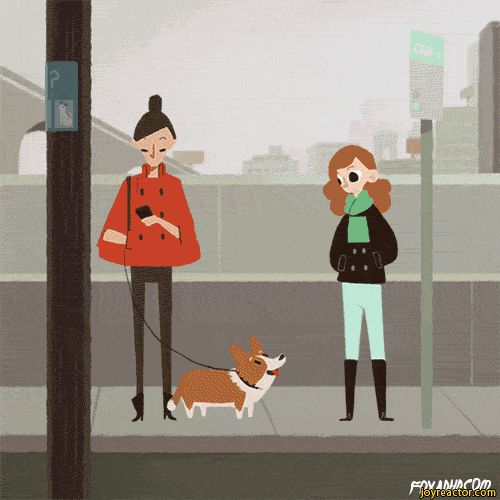woman-steal-corgi-dog-1823520.gif (500×500)