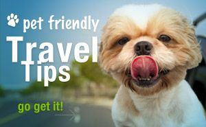 Some US state parks have gone the extra mile by providing pet friendly cabin rentals, off-leash play areas, and dog beaches. Find them here, and hit the road!