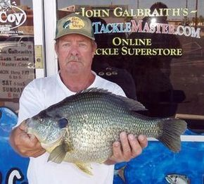 World record Red Ear Sunfish caught at Lake Havasu in 2011. This massive pan fish weighted 5.55 lbs and was almost 17 inches long!
