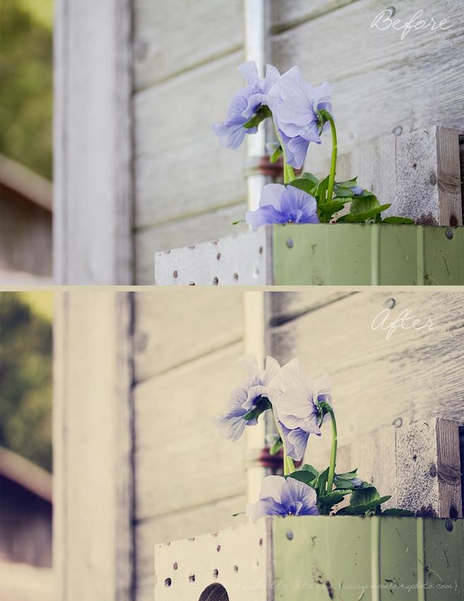 Creative Colour in Photoshop Elements 11: Calm