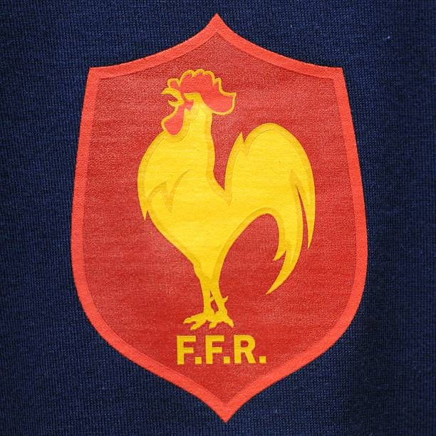 Picture showing the logo of the French Rugby Union team taken 24 July 2007 in Paris AFP PHOTO MARTIN BUREAU / AFP / MARTIN BUREAU