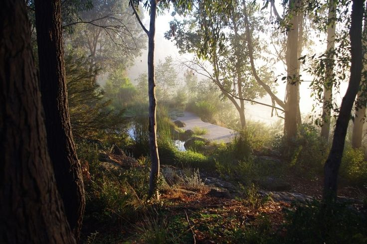 Wattle Glen, outside Melbourne, Sam Cox Landscape North aspect, Autumn 2014