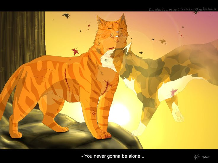 Warrior Cats Spottedlead