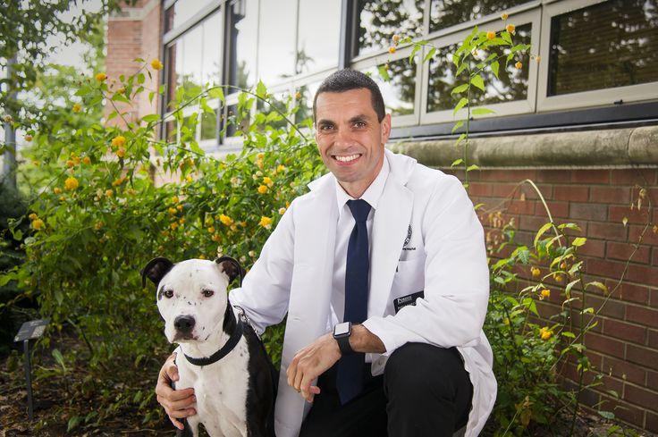 Dr. Paulo Gomes, clinical assistant professor of veterinary dermatology in Purdue's College of Veterinary Medicine (photo via Purdue University photo/Rebecca Wilcox) =