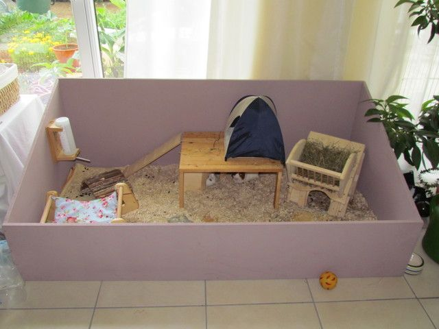 10 best images about cages and hutches on pinterest for Diy guinea pig hutch