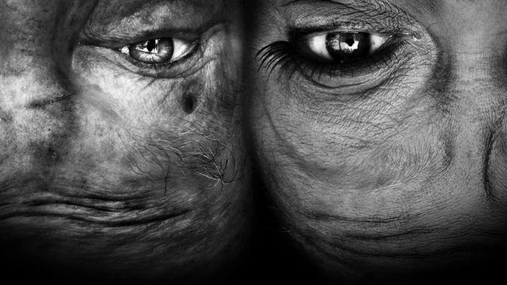 Photography exhibition by Anelia Loubser.  https://www.behance.net/AneLoubser