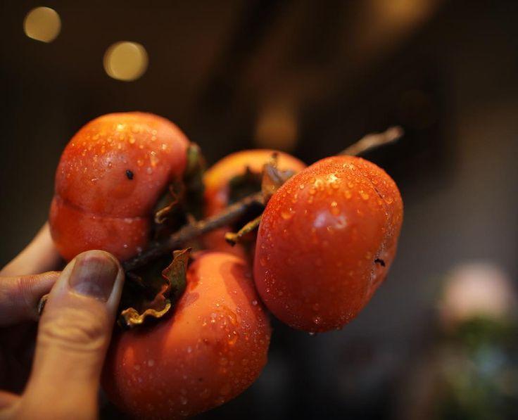 お客様のお庭にある柿の木についた実をいただきました  近頃は夏からいっきに冬になるようで朝露の秋という風でしょうか  #persimmon #Japan#autumn#winter#秋#冬#露#柿#名古屋#美容室#Cotte