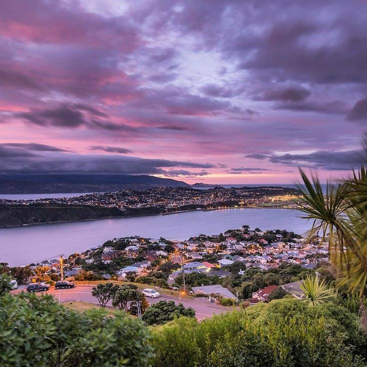 "726 Likes, 10 Comments - Wellington New Zealand (@wellington_newzealand) on Instagram: ""Head up Mt Victoria for a glorious view of a classic Wellington sunrise.@igor_titov_photography via…"""