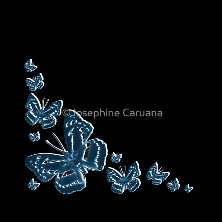 Butterfly in Blue