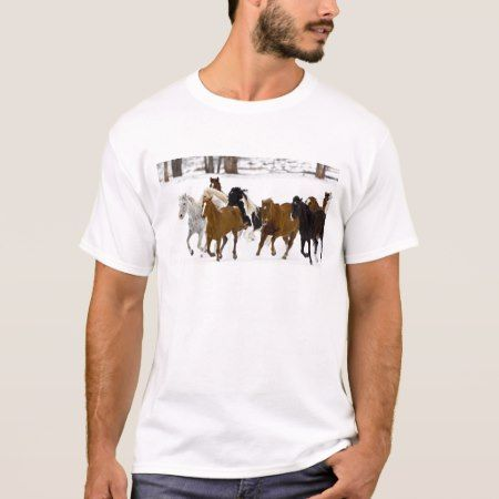 A winter scenic of running horses on The T-Shirt - tap to personalize and get yours