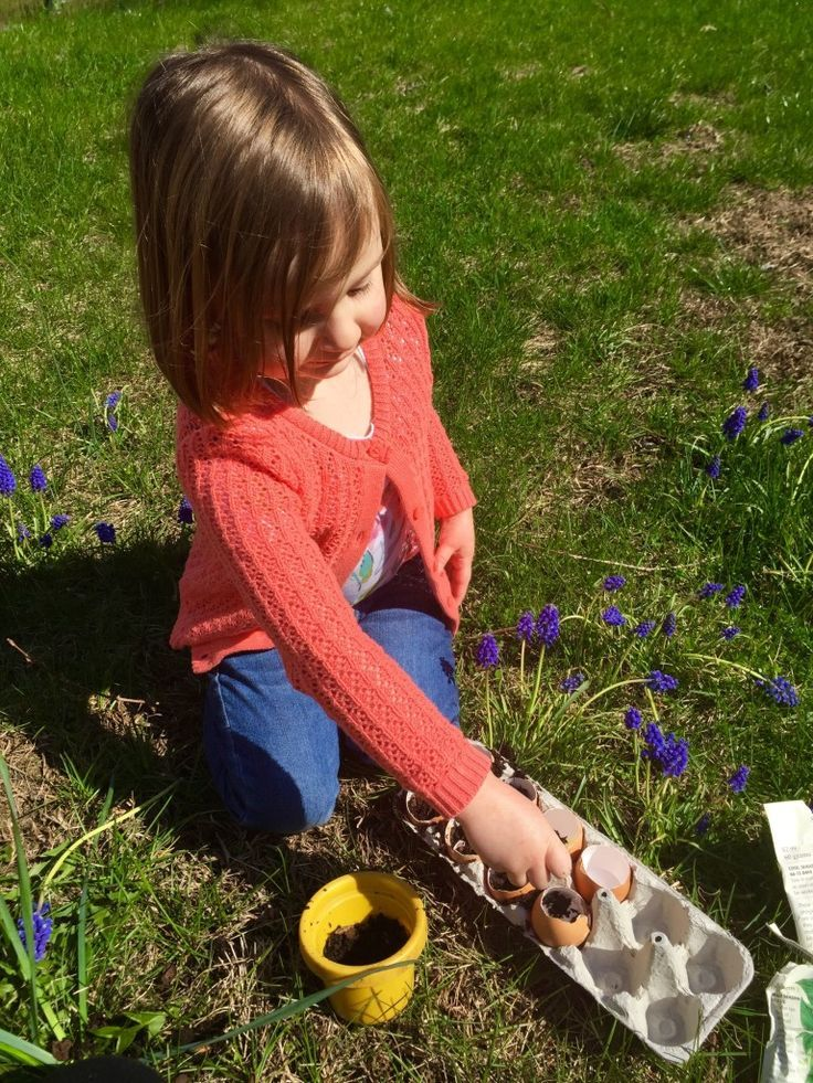 Using eggshells as planters for seeds this spring.  A fun eco-friendly project for kids.