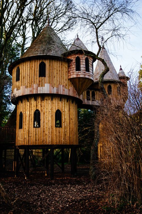 """peoplecallmejim: """"The Tree House at Birr Castle """" niphradel I feel like you would like this"""