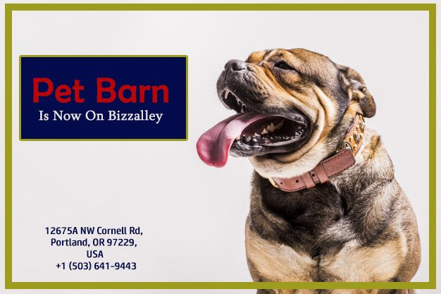 Onnect With Pet Barn On Bizzalley App Pets Business Customer App