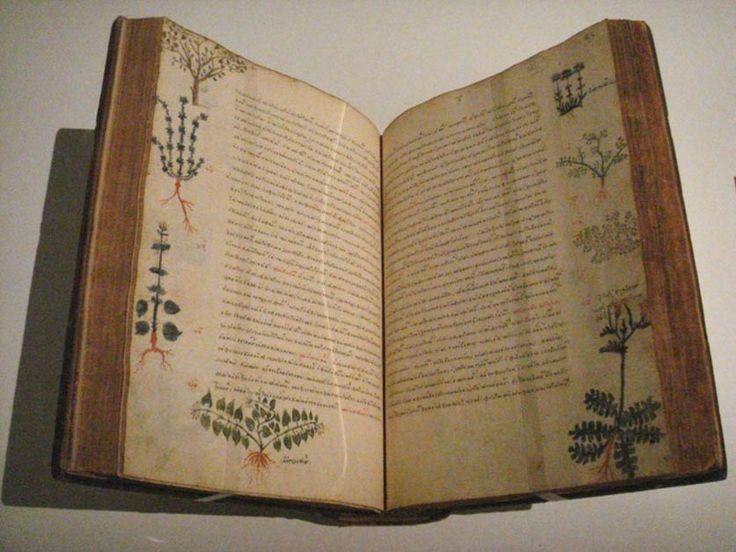 A five-volume treatise concerning medical matters, Dioscorides, De Materia Medica, Byzantium, 15th century.