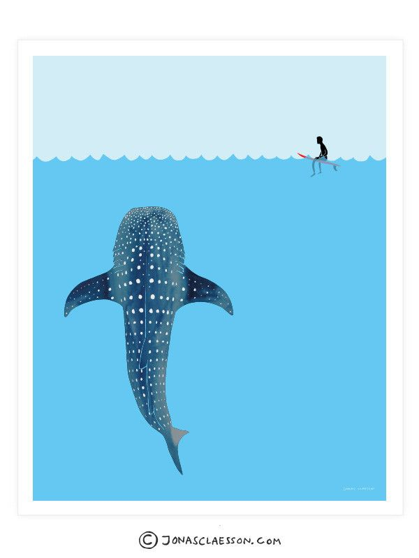 "Whale Shark Art Print. Gallery quality Giclee print on natural white, matte, ultra smooth, 100% cotton rag, acid and lignin free archival paper using Epson K3 archival inks. Custom trimmed with 1"" bor"