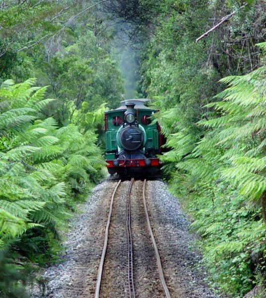 West Coast Wilderness Railway. Photo by Dan Fellow, article by Mike Fry for Think Tasmania.