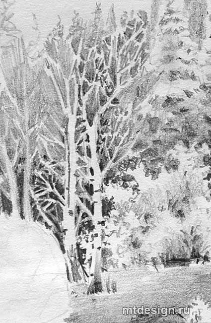 Черно белый рисунок природы
