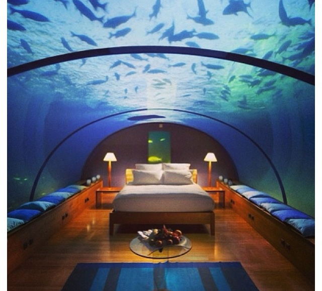 Really Cool Bedrooms Stunning Decorating Design