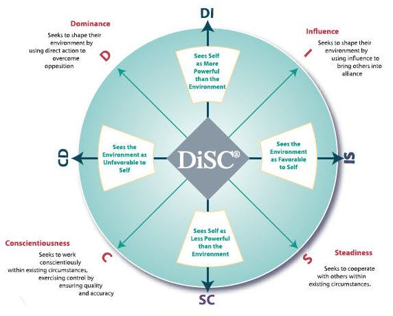 marryi disc assessment types - 572×460